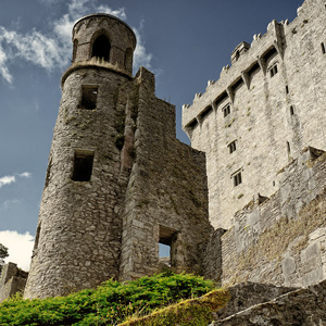 image from blarney castle corkcounty by kfphotography
