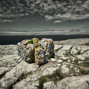 image from Ireland's Beautiful Burren