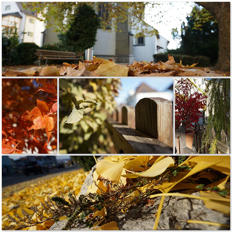 Herbst2015 Collage 740px